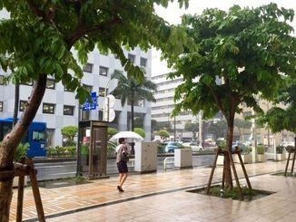 沖縄地方は前線や湿った空気の影響で曇りや雨の天気となった