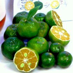 沖縄の果実シークヮーサー