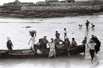 漁から戻ったサバニの魚を取るカミアチネーの女性たち。遠浅の海にふくらはぎあたりまで漬かっている。中央左の女性は竹かごと頭の間にまな板を載せる。魚をさばく以外に、魚の汁が頭に垂れるのを防ぐ工夫だ。糸満市糸満、前端区にあった新島浜(みいじまばま)とみられる。今は埋め立てられている。カミアチネーは得意先と家族ぐるみの付き合いもあった。同市潮平の金城信子さん(87)は「毎日のように訪れる行商人の家に招かれ、ごちそうになった時もある。糸満でハーレーのあるユッカヌヒー(旧暦5月4日)だった」と記憶をたどる。(写真は朝日新聞提供)