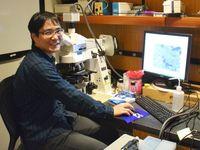 <佐二木健一博士 細胞分裂研究>工芸の中に科学の理 自然通し未来の方向性 OISTサイエンストーク(4)