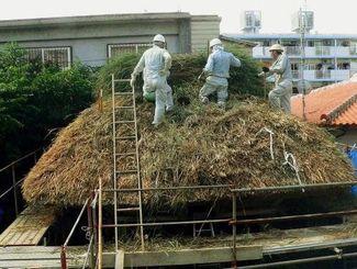 かやぶき屋根を手際よくふき替える職人=名護博物館