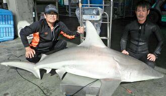 伊江島近海で約100キロのサメを捕獲した宮里和義さん(左)と玉城太智さん=14日、伊江漁業協同組合製氷所