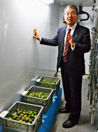 シークヮーサー果皮の湿度が鍵 青森・大青工業の「氷温貯蔵」視察【深掘り】
