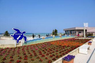 海洋博公園(沖縄観光コンベンションビューロー提供)