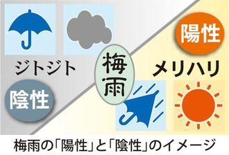 梅雨の「陽性」と「陰性」のイメージ