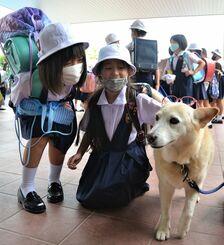 下校前に眼鏡をかけてもらうハッピー(手前右)=7日、宜野湾市真栄原の沖縄カトリック小