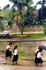 ぬかるみは裸足で/ぬかるみの中を裸足で歩く第三高等女学校の生徒たち