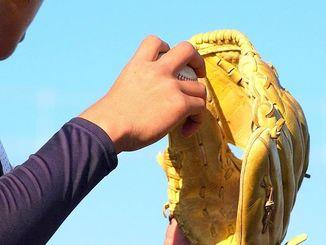 高校野球(資料写真)