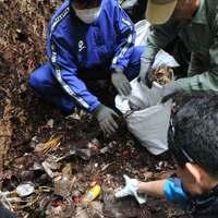 遺骨が眠る地に大量ごみ「心痛む」 ボランティア300人が1068袋回収 沖縄・摩文仁