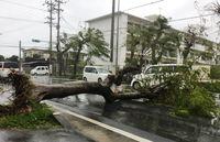 台風18号 宮古島に大きな爪痕 なお1万4090戸停電・土砂災害の危険も 16日に九州上陸の恐れ