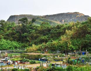 倉敷環境が積み上げたごみ山(後方)=10日、沖縄市池原