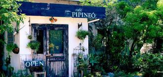 緑に囲まれた自然豊かな場所にたたずむ「cafe PIPINEO」