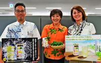 県産シークヮーサーの果実感たっぷり 缶チューハイ全国で発売 「ハイサワー」の博水社