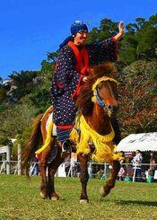琉球競馬「ンマハラシー」で優勝した沖縄こどもの国の与那国馬「どぅなん」=1月31日午後、沖縄市・沖縄こどもの国