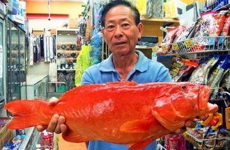 古宇利島沖で62センチ、3.4キロのアカジンを釣った多和田真正さん=13日