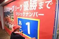 「赤ヘル時代、到来」 広島カープのキャンプ地・沖縄市で優勝カウントダウン