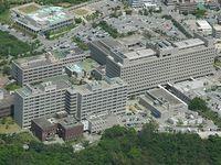 琉大薬学科設置を要請 沖縄県薬剤師会 林文科相「止めておく」