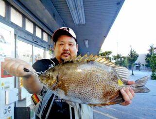 泊海岸で50.5センチ、2.51キロのカーエーを釣った赤嶺五雄さん=7月21日