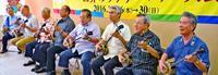 三線大合奏の参加者募る ウチナーンチュ大会開会・閉会式で披露【動画あり】
