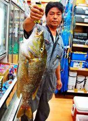 嘉手納海岸で66・5センチ、3・7キロのタマンを釣った古謝茂さん=20日