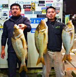 中城海岸で69・5センチ、3・66キロのタマンを釣った小嶺裕也さん(左)=4日