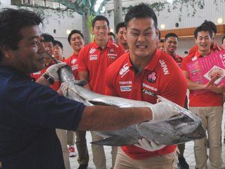 7人制ラグビーの男子日本代表候補の歓迎式では、30キロのキハダマグロが贈られた=2016年5月