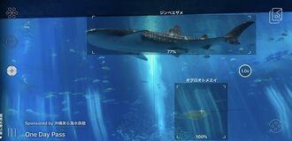 カメラを水槽の生物にかざすと瞬時に生物名が表示される「かざすAI図鑑」の映像