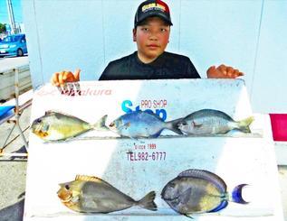 本部海岸で33.3センチのトカジャーを釣った親里春伽さん=25日
