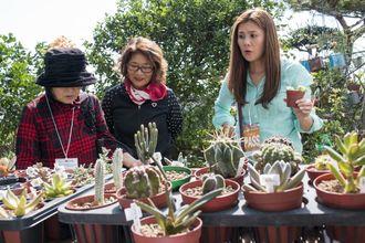 【訪れた人へ多肉植物の魅力を語る大城さん(中央)】