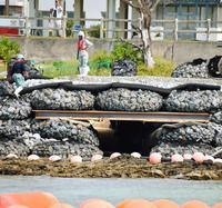辺野古の工事現場にウミガメ用トンネル