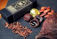 チョコに込められた、沖縄サトウキビの魅力 カカオ生産にも挑戦「県産原料で作りたい」