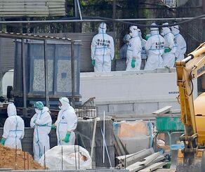 新たに感染が確認された養豚場に集まった作業員=15日、うるま市(望遠レンズで撮影)