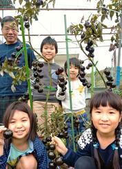 たっぷり実った黒トマトを手に笑顔を浮かべる知念俊彦さん(後列左)=14日、南城市大里