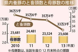 県内養豚のと畜頭数と母豚数の推移