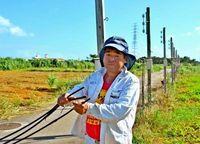 なぜ? 沖縄キク農家で相次ぐ銅線盗難被害