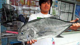 読谷海岸で67.5センチ、2.85キロのロウニンアジを釣った比嘉大志さん=20日