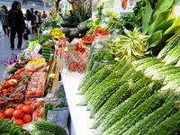 試食に販売、沖縄の農産品をもっと知ろう 「花と食のフェスティバル」きょう27日開幕