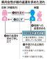 娘の返還、米地裁が認定 ハーグ条約に基づき沖縄在住女性が要求