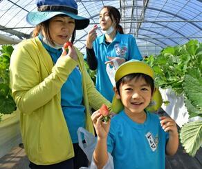 真っ赤なイチゴに笑顔がこぼれる漢那幼稚園児と職員=15日、宜野座村のイチゴ園