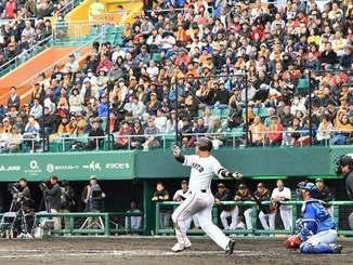 巨人―DeNAのオープン戦では多くの観客がスタンドを埋めた=25日午後、沖縄セルラースタジアム那覇
