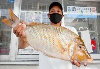 南部西海岸で61.6センチ、3.06キロのタマンを釣った國吉光さん=1日