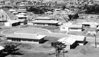 基地の島沖縄 刻む壺/那覇在住の収集家所有/嘉手納の住宅完成記念品か