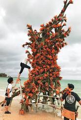 県産ストレリチアを使った巨大な「植物彫刻」を制作するスタッフら=11日、南城市の百名ビーチ(JAおきなわ提供)