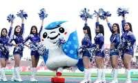 熱狂に火をつける FC琉球の背中を押し続けた、ダンスチーム「琉球ボンバーズ」