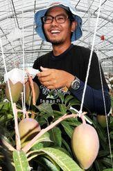 一番好きな実をつるす作業で笑顔を見せる漢那宗貴さん=糸満市与座の「かんな農園」