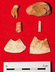 サキタリ洞遺跡で出土された(上段から)人骨、貝のビーズ、貝器=15日午前、那覇市の県立博物館・美術館