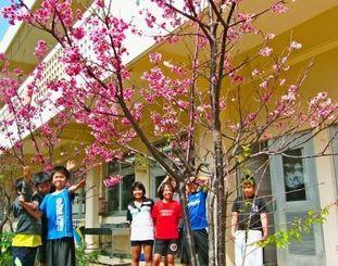 春の巣立ちを満開の花で見守るヒカンザクラと児童たち=与那国小学校