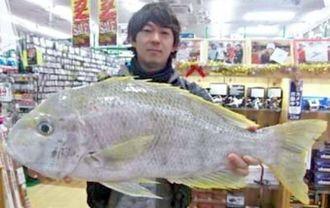 9日、慶良間沖で77.5センチ7.1キロのサザナミダイを釣った具志潤さん