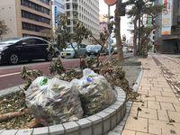 沖縄の天気予報(10月3日~4日)台風の影響で荒れる