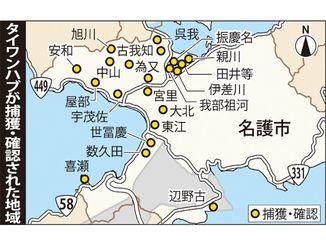 タイワンハブが捕獲・確認された地域